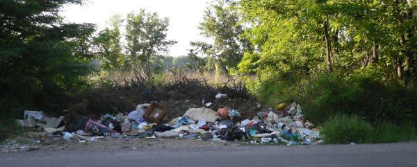 Abfallhaufen am Wegrand
